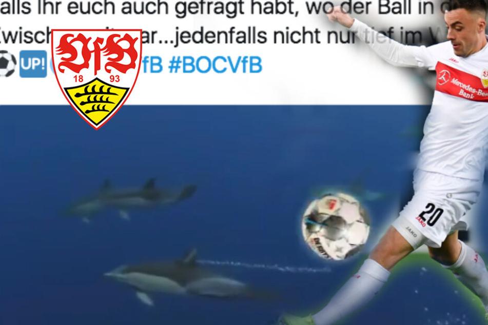 Ball verschwindet bei Stuttgart gegen Bochum: So witzig reagiert der VfB