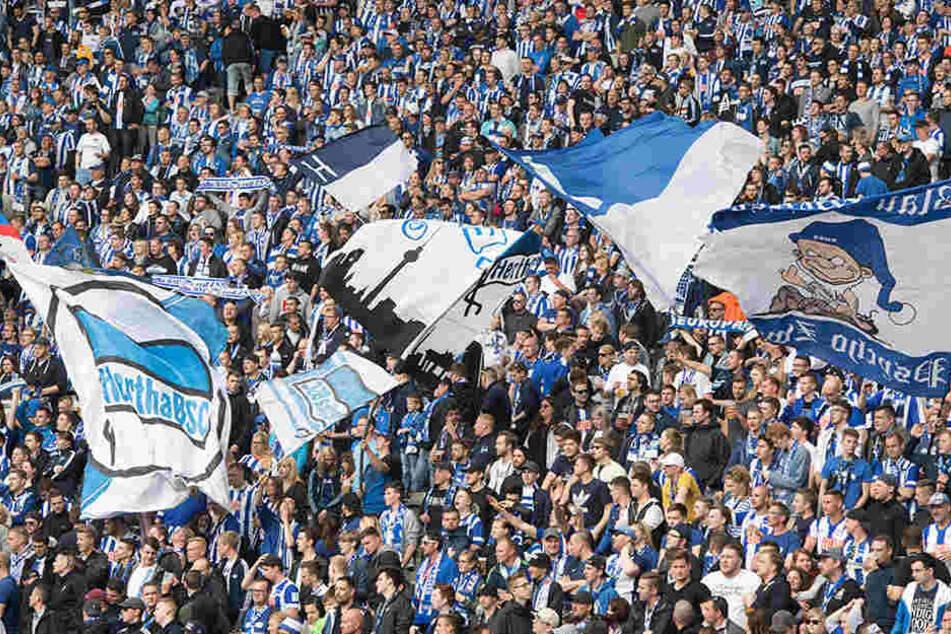 Die Hertha-Fans würden einen Verbleib in Berlin begrüßen. Ein Umzug ins Umland kommt gar nicht erst in Frage. (Symbolbild)