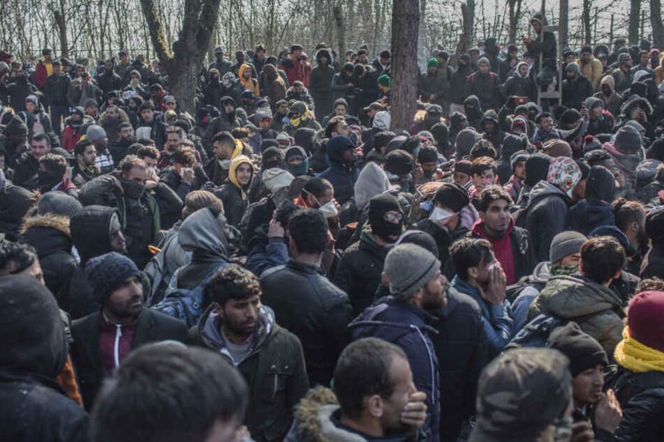 Zahlreiche Migranten warten nach ihrer Ankunft am bereits geschlossenen türkisch-griechischen Grenzübergang in Pazarkule.