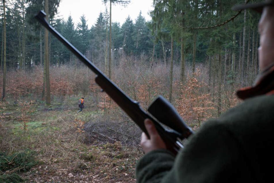 Jäger erschießt sich bei Wildschweinjagd versehentlich selbst