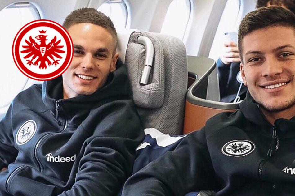 Training in den USA: Eintracht-Adler fliegen in Richtung Florida