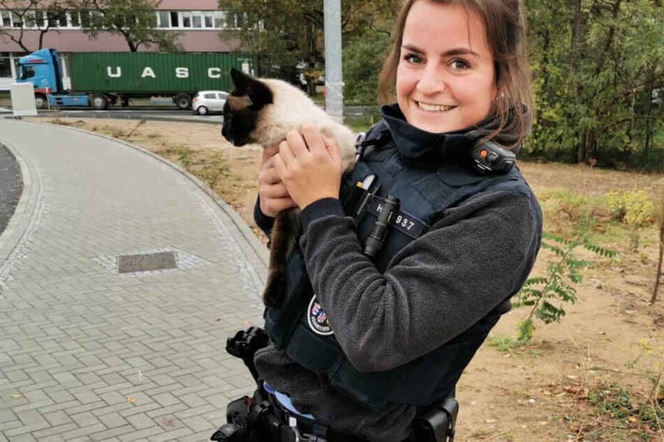 Das Foto zeigt Polizeikommissarin Katalin Hajnadi mit der geretteten Katze.