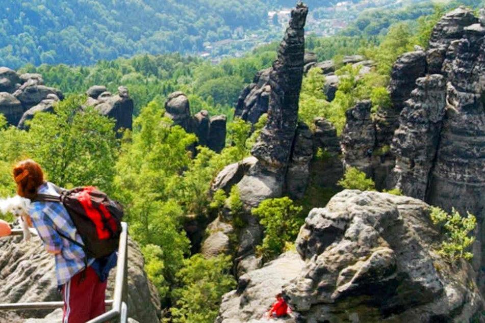 Schwerer Unfall in Bad Schandau! Wanderer stürzt in sieben Meter tiefe Felsspalte