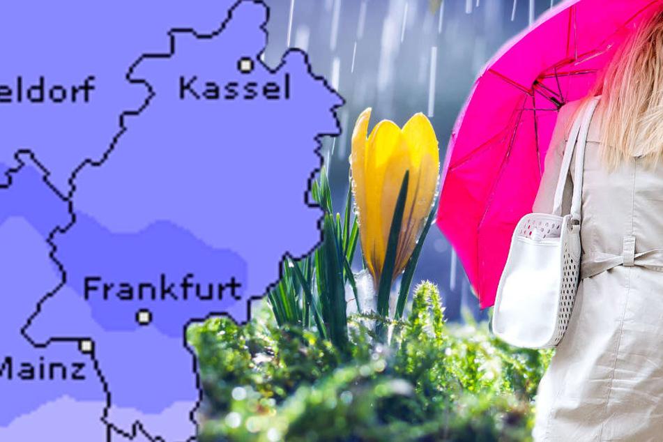 Wetteronline.de (Grafik) sagt insbesondere für den Samstag starke Niederschläge im Raum Frankfurt voraus.