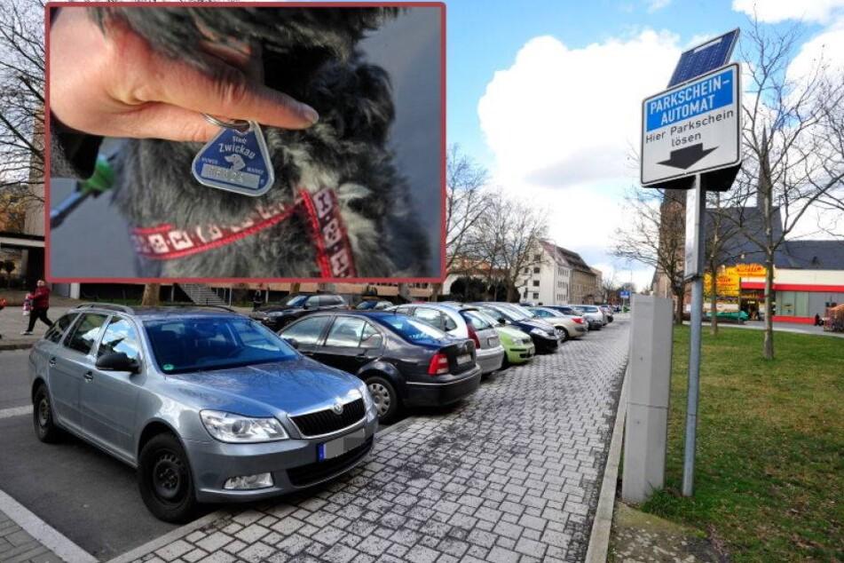 Leere Stadtkasse: Zwickau dreht an Preisschraube