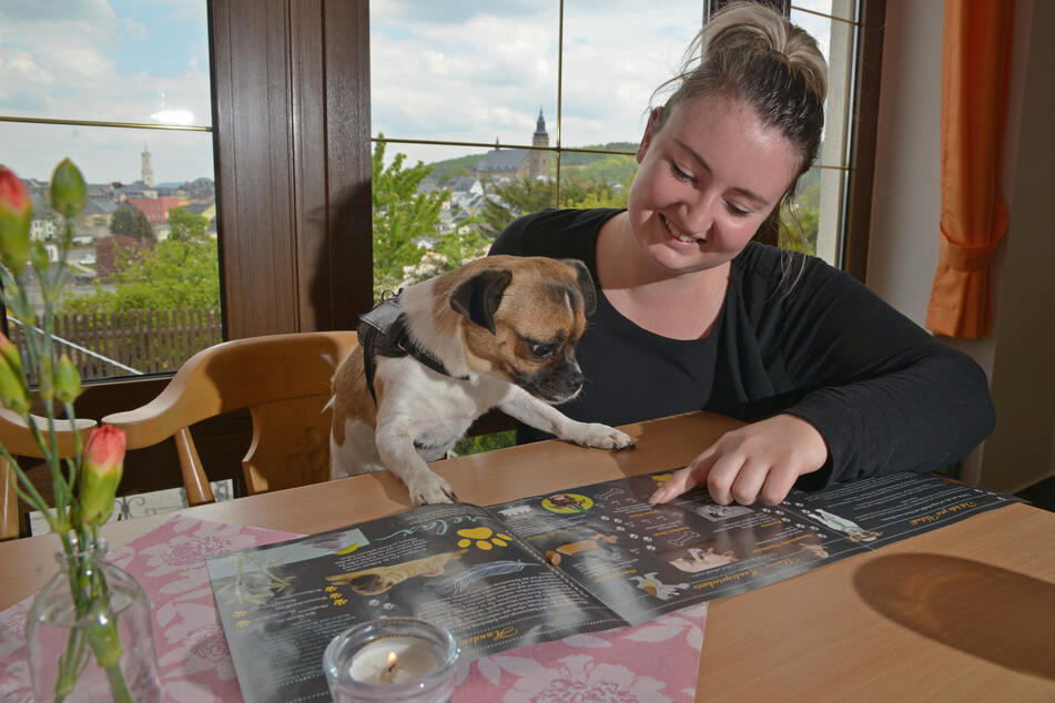Eis, Bier und Kekse: Hier fühlen Hunde pudelwohl