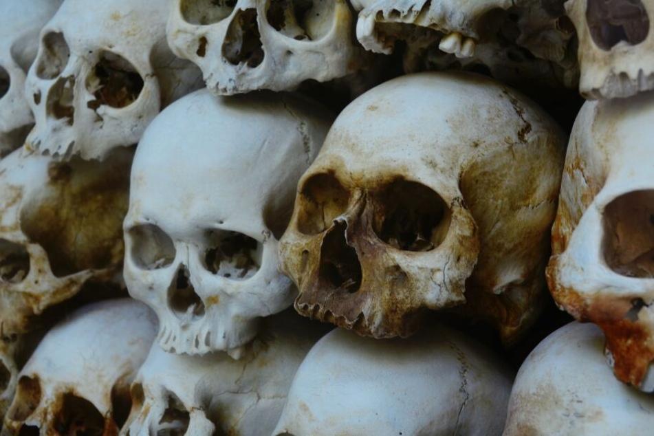 Massengrab mit 30 Toten entdeckt: Vier Menschen wurden bisher identifiziert