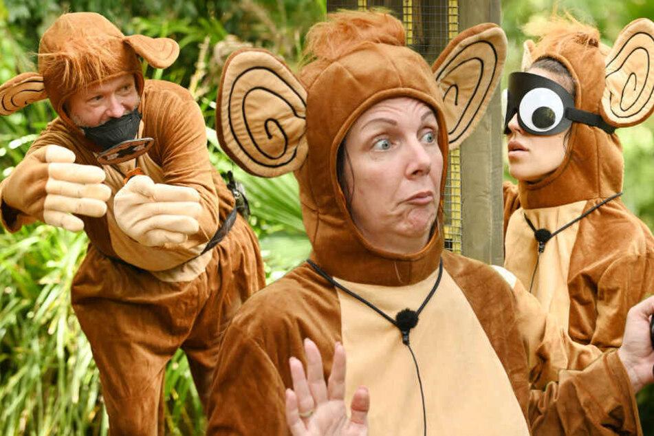 Trödler Markus, Spaßbremse Danni und Ghettobraut Eleeena (v.l.n.r.) machten sich bei der Schatzsuche zum Affen.