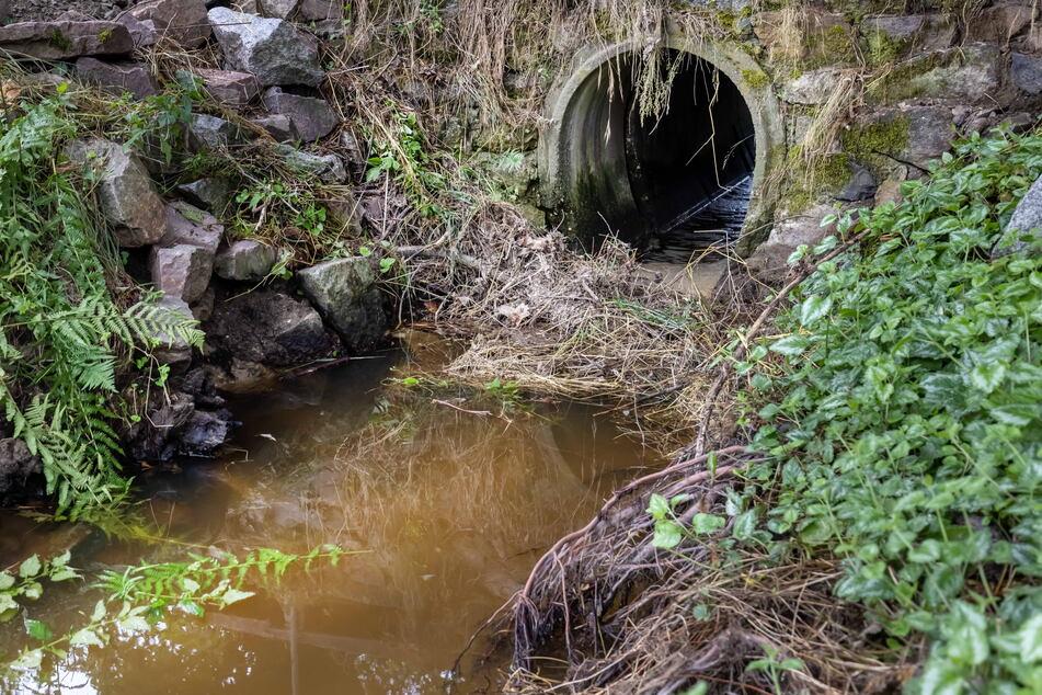 Zu schmal: Der Bachdurchlass am Dittricher Weg sorgte beim Starkregen mit für das verheerende Hochwasser.