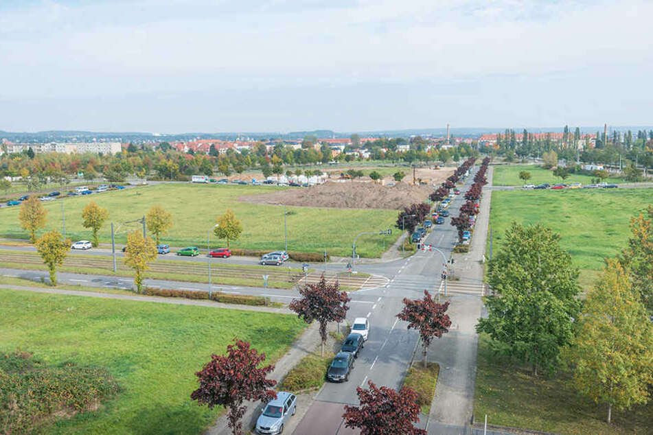 Die ersten Wohnungen werden zwischen Flutrinne und Elbe Park gebaut.