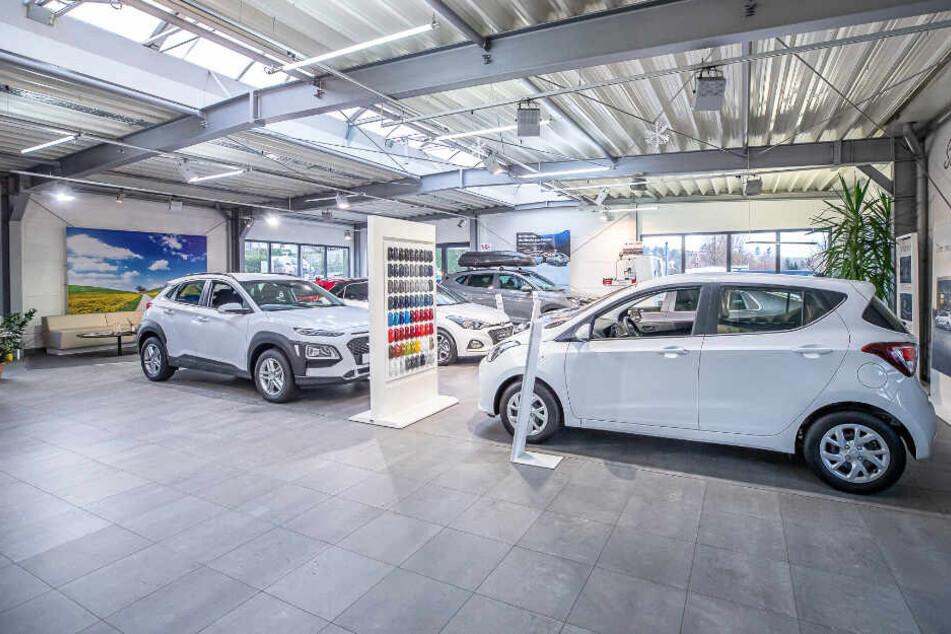 Viele Modelle stehen im Autohaus Dippoldiswalde zur Verfügung