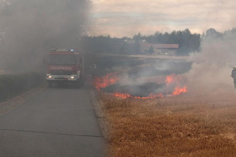 Fahrlässige Brandstiftung? Polizei ermittelt nach Feldbrand in Zittau