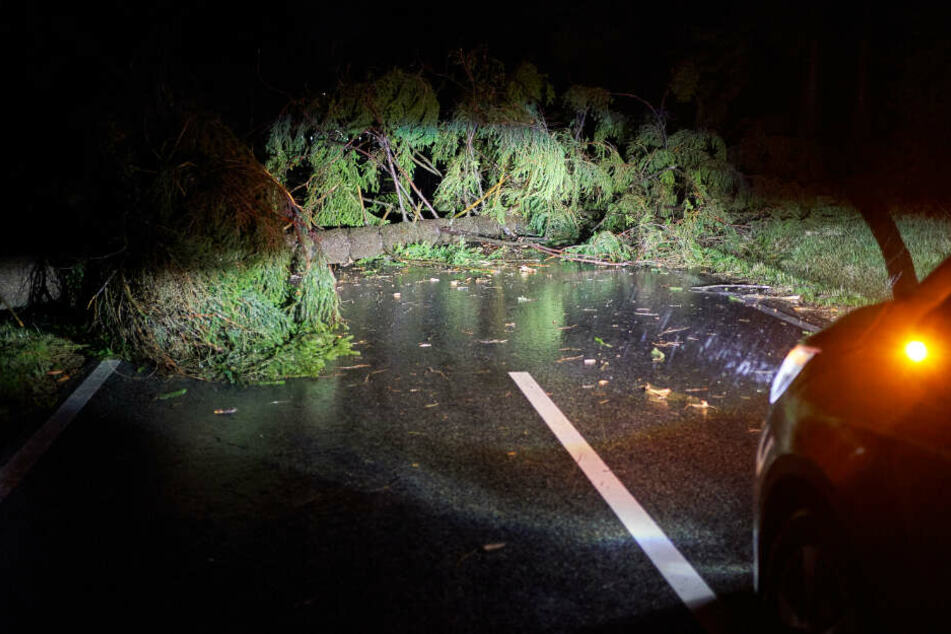 """Sturmtief """"Sabine"""" hat in weiten Teilen Deutschlands den Verkehr bereits erheblich durcheinandergebracht und am Sonntagabend erste Schäden verursacht."""