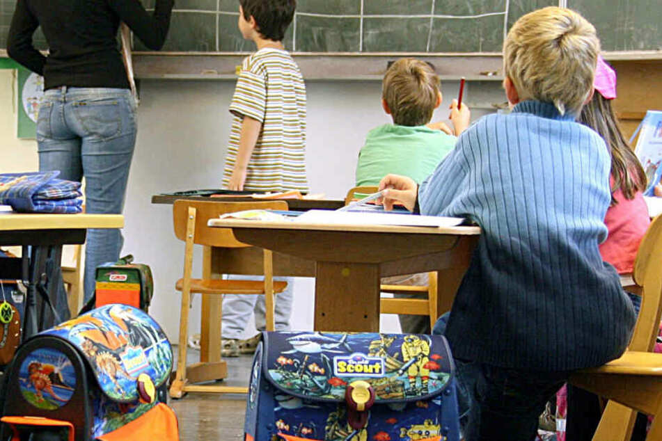 Wenn die Schule wieder losgeht, sollen Schüler mehr über Umwelt und Klima lernen. (Symbolbild)