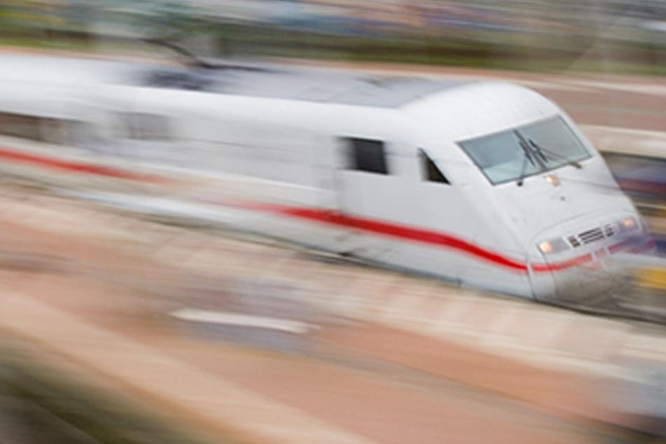 ICE rast in Wildschwein-Herde: Zug Schrott, Reisende werden evakuiert