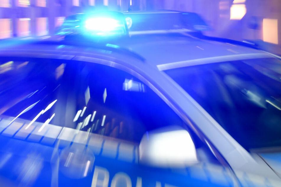 Ein Streifenwagen der Bundespolizei steht mit eingeschaltetem Blaulicht in Norddeutschland (Symbolbild).