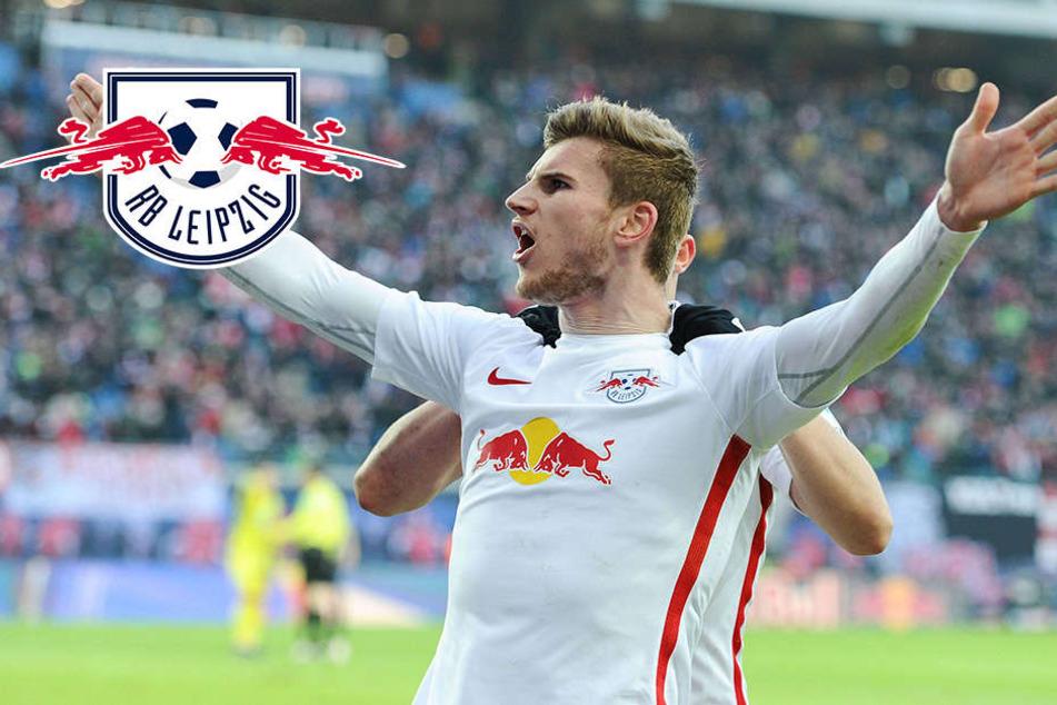 Im Falle Champions-League: RB Leipzig will keine Superstars kaufen