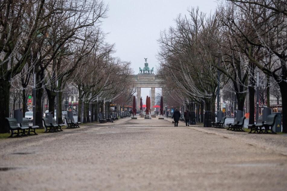 Der Boulevard Unter den Linden ist eine der bekanntesten Straßen Berlins