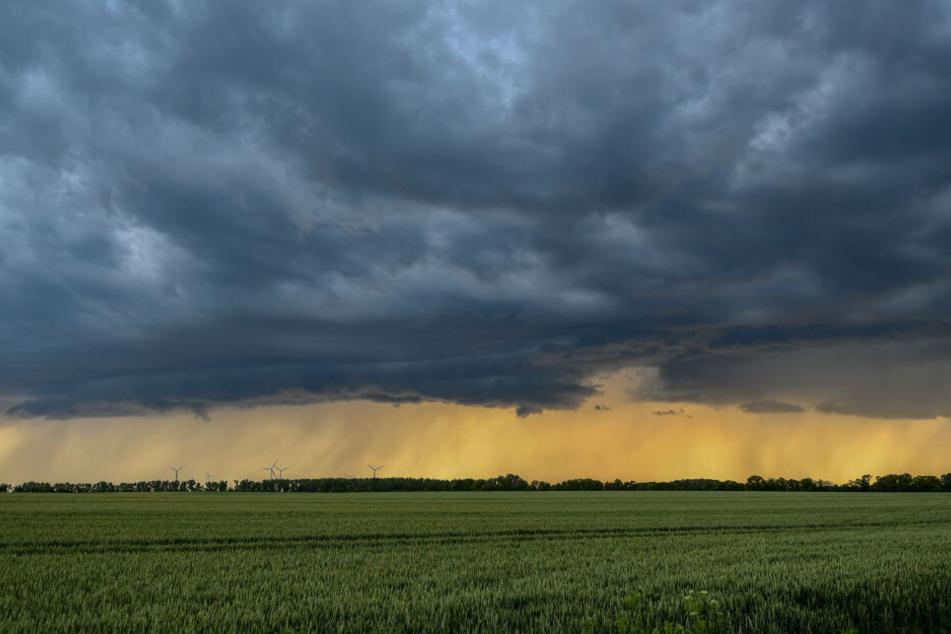 Am Donnerstag ging eine Regenfront über Magdeburg nieder.