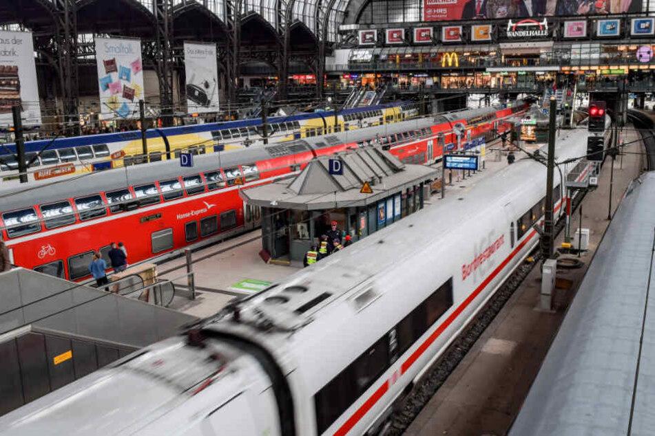 Ein ICE verlässt den Hamburger Hauptbahnhof. (Symbolbild)