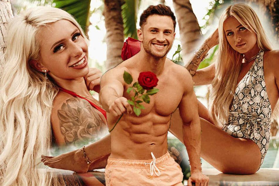 Neue Singles für Bachelor in Paradise: Sie macht's nun schon zum dritten Mal!