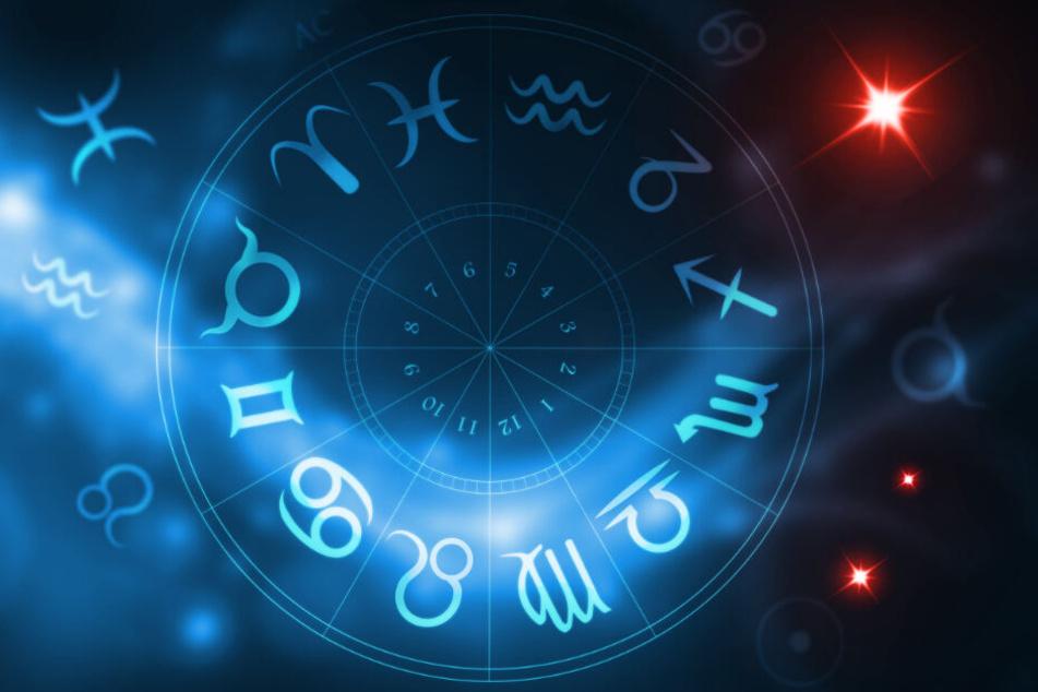 Die Tierkreiszeichen geben Einblick in deine Zukunft.