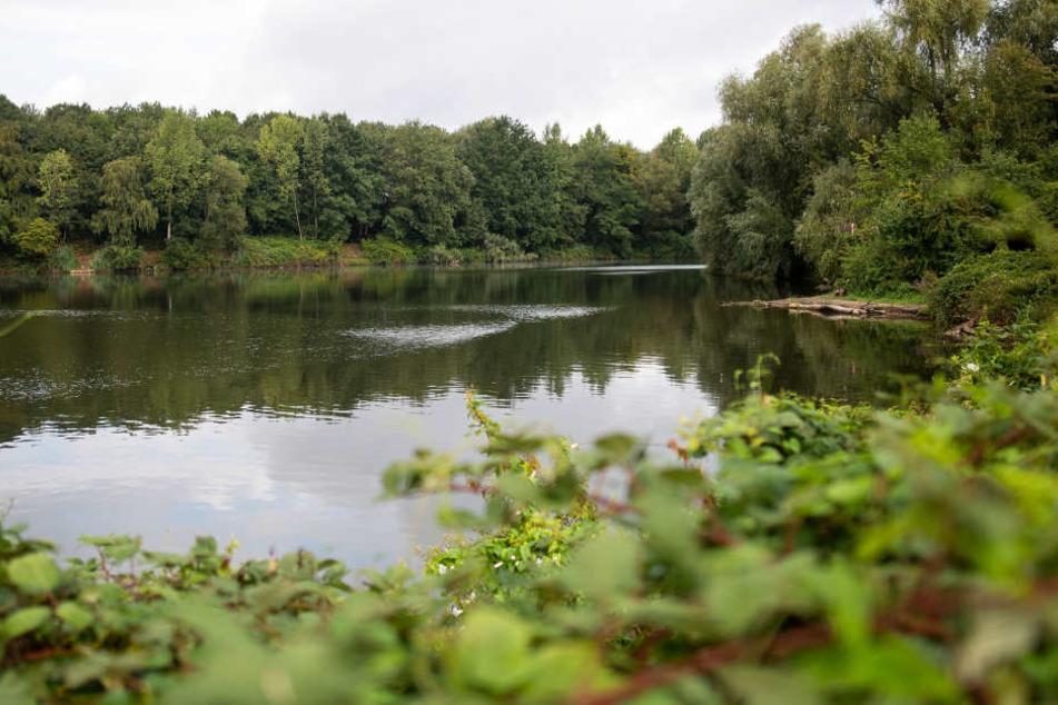 In diesem See bei Meerbusch hatte die Anakonda für Aufsehen gesorgt.