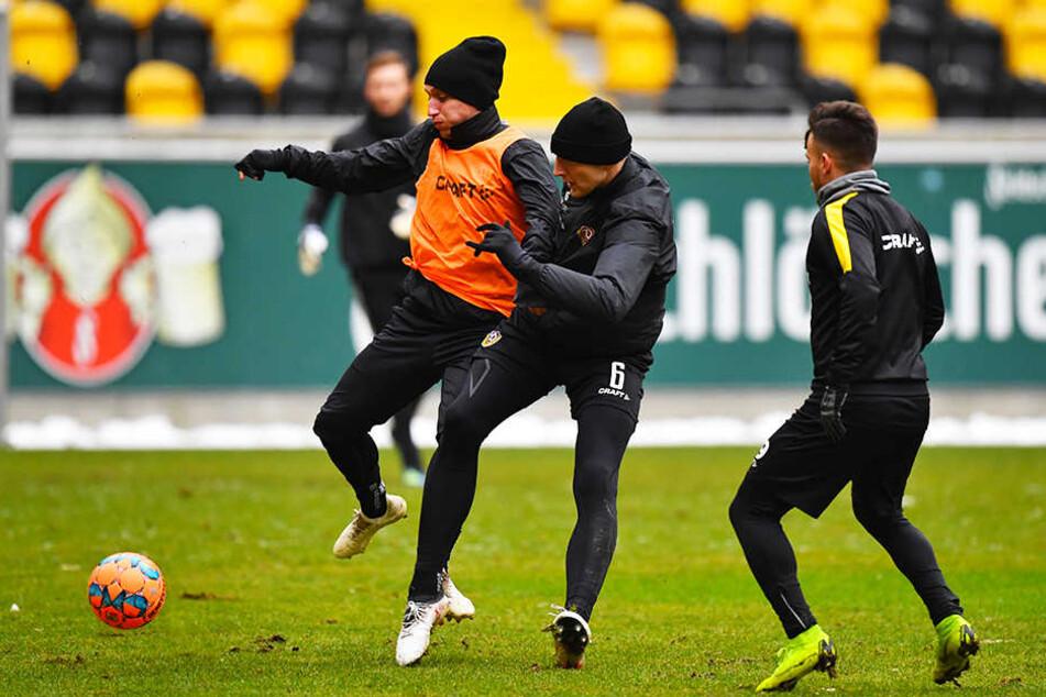 Die Spieler von Dynamo Dresden treten am Mittwoch im Rudolf-Harbig-Stadin zum Testspiel gegen Budissa Bautzen an.