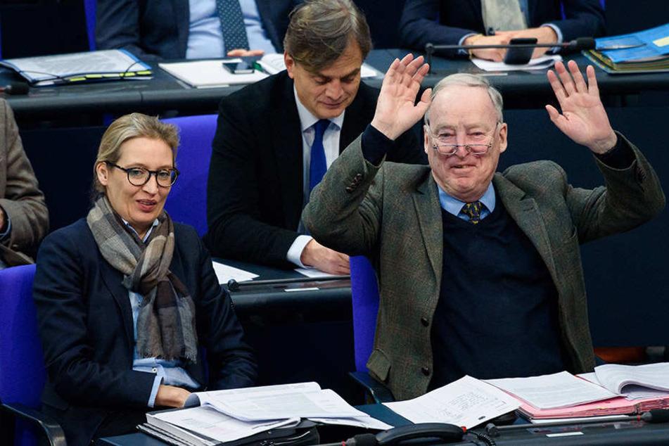 Grund zur Freude bei den AfD-Fraktionsvorsitzenden Alice Weidel und Alexander Gauland: In einer Wahlumfrage kommt die Partei auf 16 Prozent.