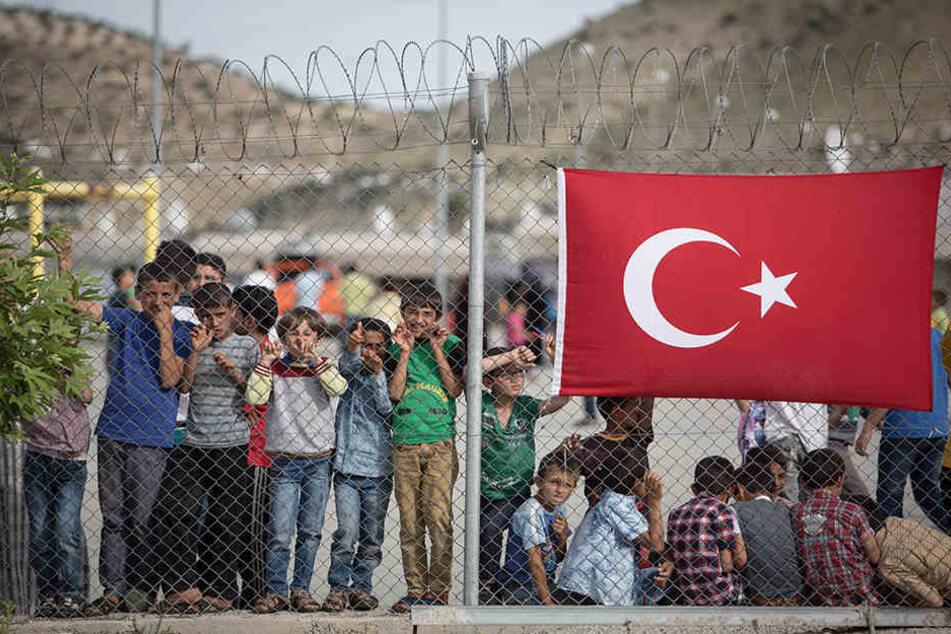 Syrische Flüchtlinge in der Türkei sehen die Organspende als letzten Ausweg.
