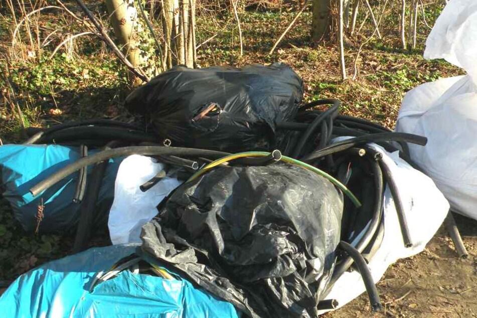 Unverständlich: Immer wieder legen Unbekannte ihren Müll einfach mitten in der Natur ab.