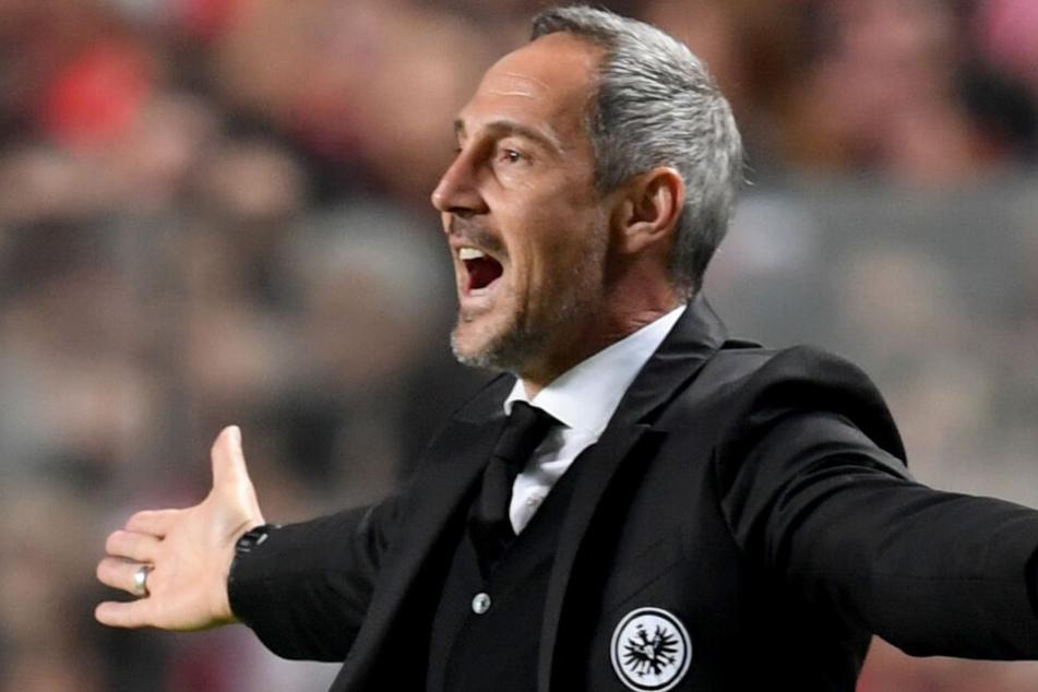 Trainer Adi Hütter bei Europa-League-Spiel am 11.04.2019 gegen Benfica Lissabon. Frankfurt