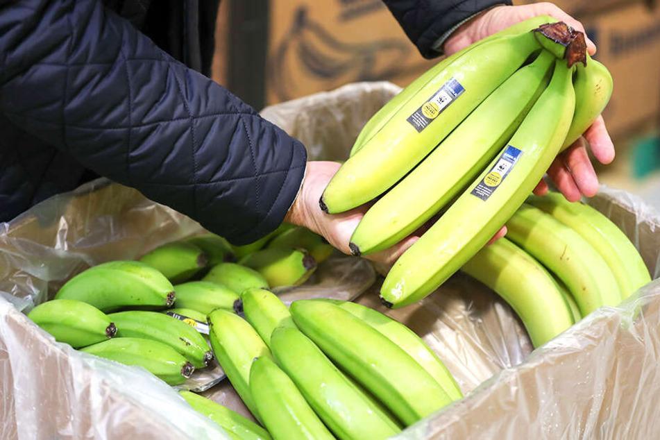 Verschwinden unsere Bananen demnächst aus den Supermärkten? (Symbolbild).