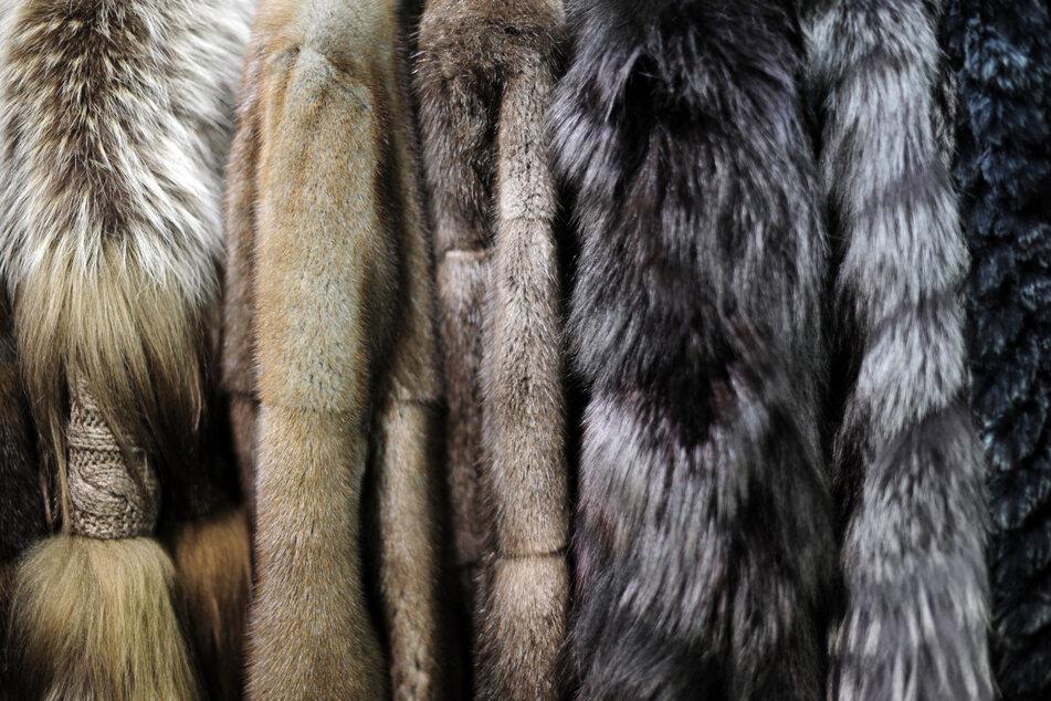 Keine echten Pelze mehr: Das ändert sich beim Warenhaus Breuninger