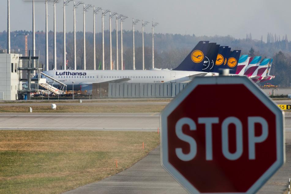 Stillgelegte Flugzeuge der Lufthansa (vorne) und der Lufthansa-Tochter Eurowings stehen auf dem Vorfeld am Flughafen München.