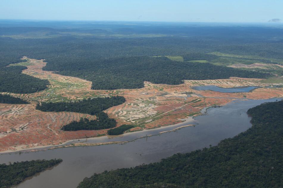 Entwaldete Waldflächen am Rande des Juruena-Nationalparks im Amazonas-Regenwald.