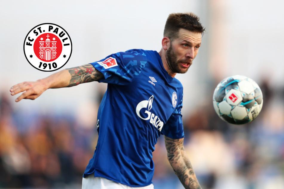Auswärtsspiel in Sandhausen: FC St. Pauli plant mit Burgstaller
