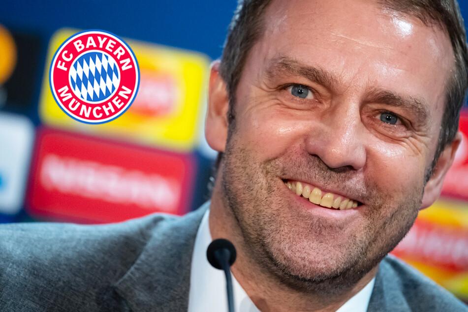 """""""Wollen erfolgreich sein"""": Trainer-Spekulationen lassen FC-Bayern-Coach Flick kalt"""