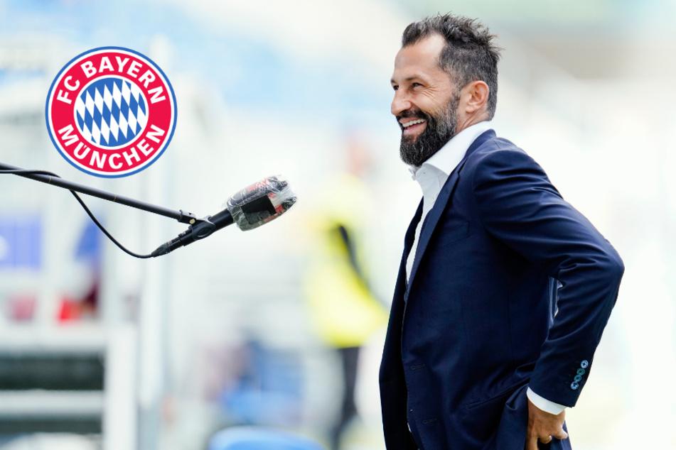 FC Bayern mit vier Last-Minute-Transfers: Salihamidzic erklärt das späte Handeln