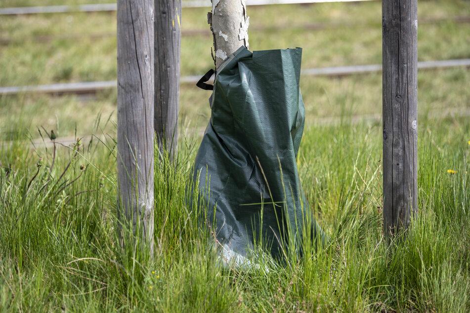 Ein Wasserauffangsack lässt das Wasser durch kleine Löcher langsam ins Erdreich sickern. Bürger können sie befüllen.