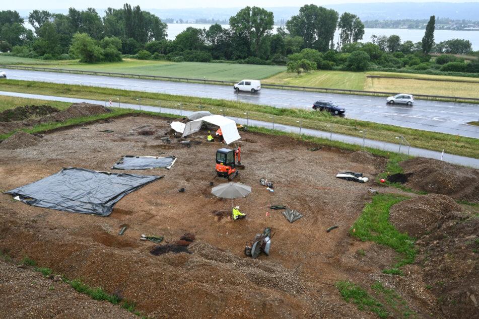 Kreisarchäologen graben Teile von Skeletten an der historischen Hinrichtungsstätte unweit des Gnadensees aus.