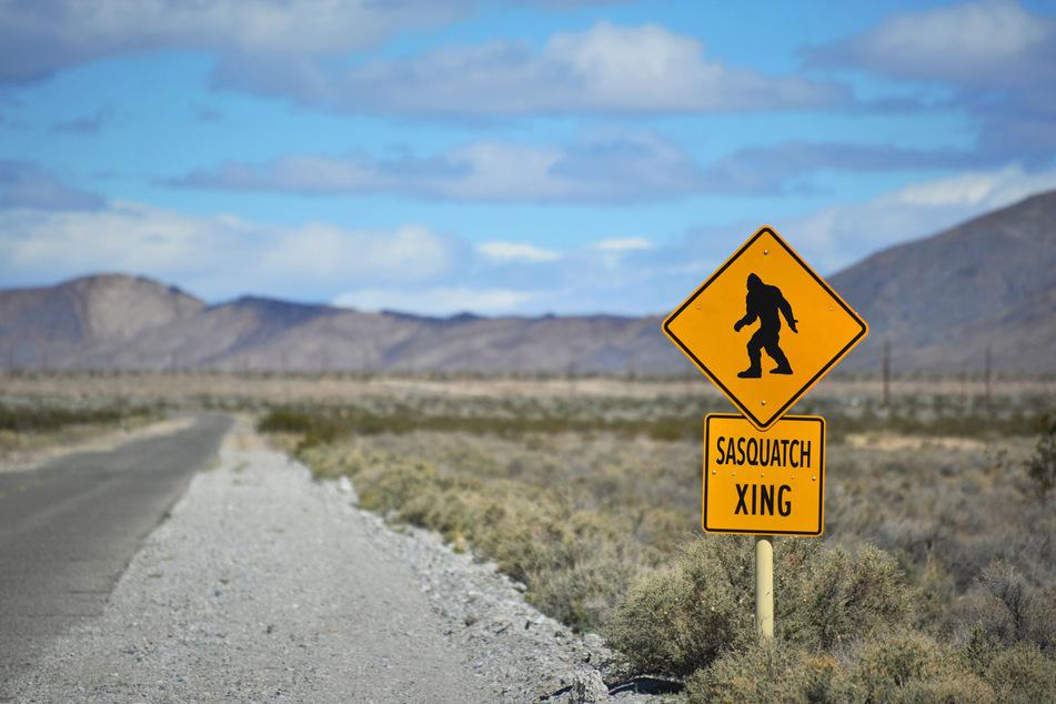 """""""Bigfoot"""", """"Sasquatch"""", """"Menschenaffe auf zwei Beinen"""": Es gibt viele Namen für die mythische Kreatur, doch einen Beweis für ihre Existenz, den gibt's noch nicht. (Symbolbild)"""