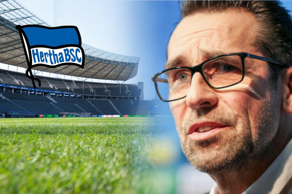 Hertha BSC: Profi mit Coronavirus infiziert