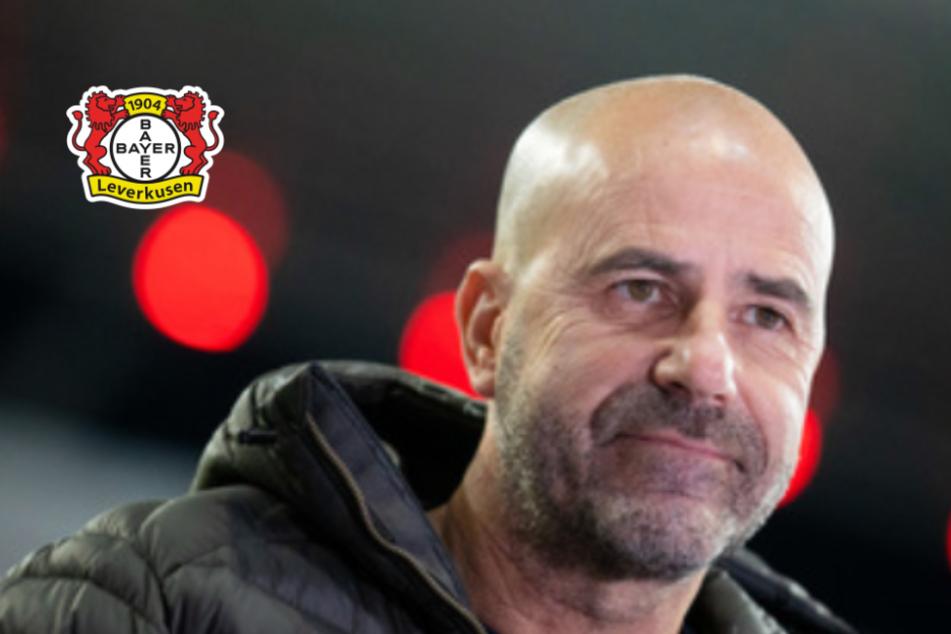 Bayer Leverkusen mit riesiger Verletzten-Liste vor Europa-League-Spiel bei Slavia Prag