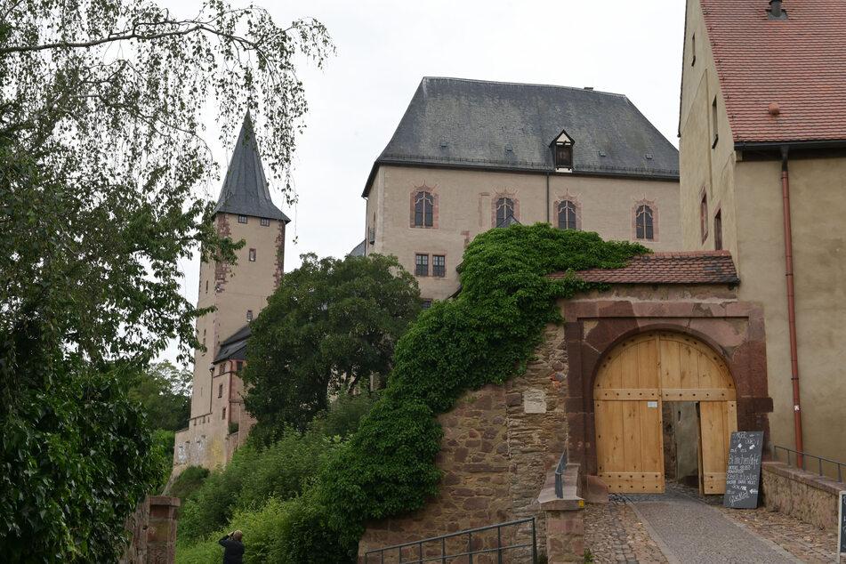 Dieser Erlebnistag am Schloss Rochlitz führt Euch in den Wald.