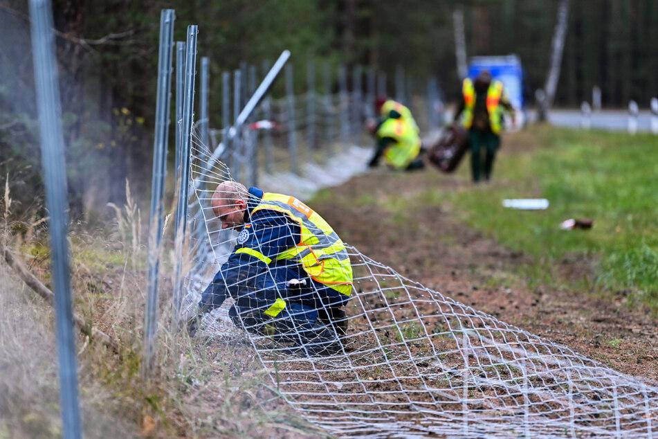 Zaunbau ist teuer: Der Bund soll sich daran beteiligen, fordert Sachsen.