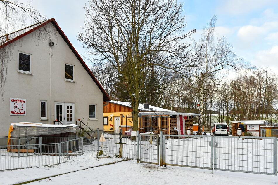 Das Tierheim Bischdorf hat bereits Erfahrung mit Schafen.