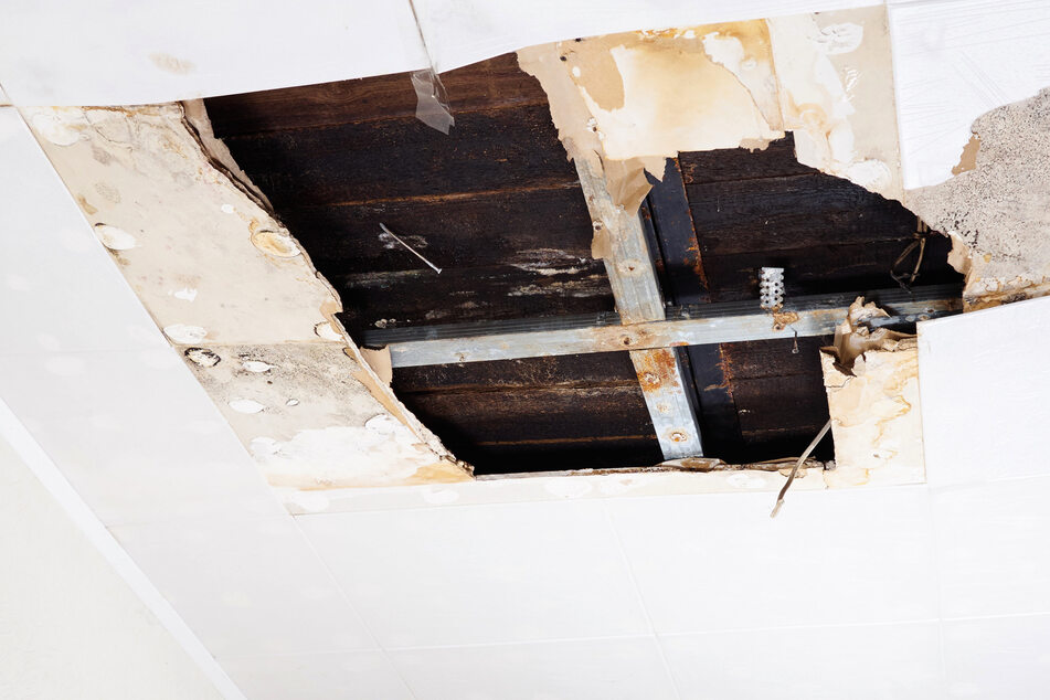Child's skeleton falls from a home's ceiling in gruesome mystery