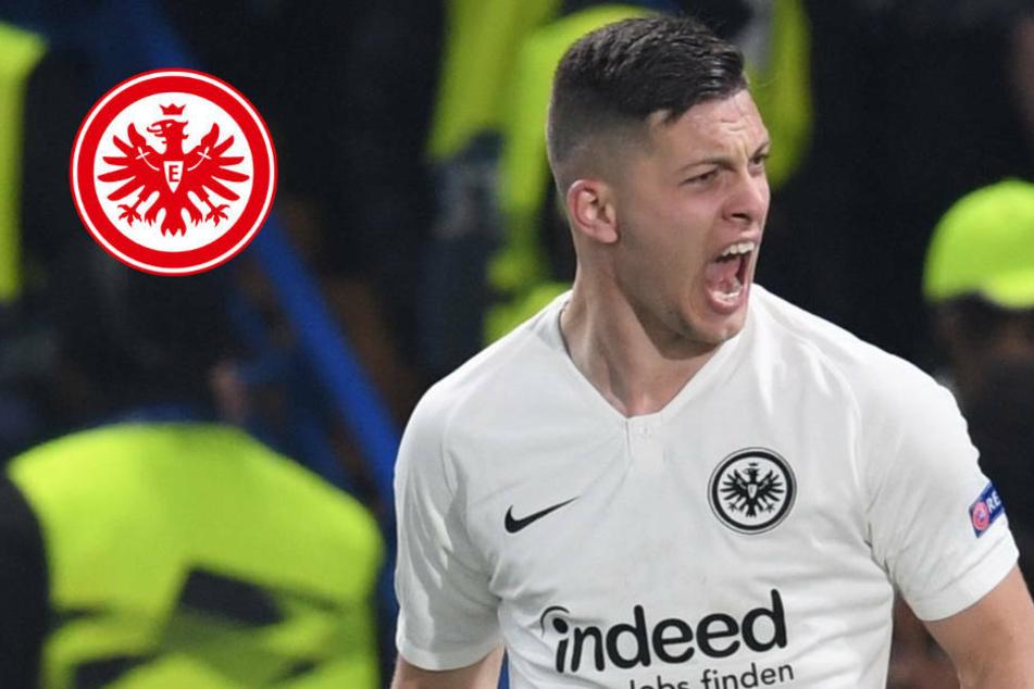 """Eintracht-Trainer Adi Hütter: """"Luka Jovic ist am Sonntag einsatzbereit"""""""