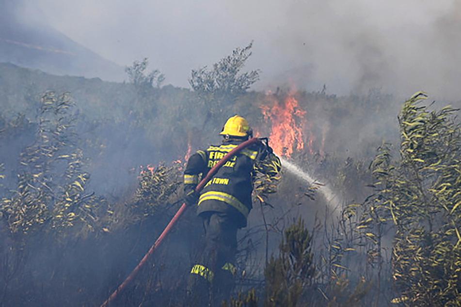 Ein Feuerwehrmann im Einsatz am Tafelberg. Einige der Wehren erlitten Brandwunden.